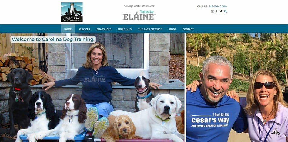 Carolina Dog Training / Trained by Elaine website