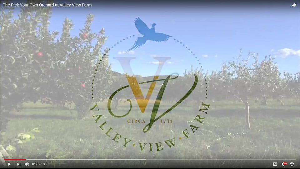 Valley View Farm Pick Your Own Orchard Delaplane Fauquier Virginia Talk 19 Media Video Production
